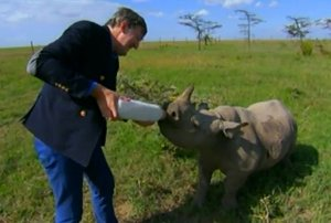 BBC host bottlefeeds baby rhino
