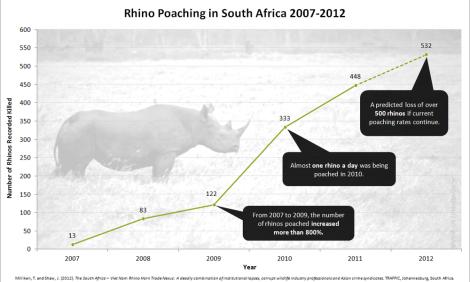 rhino graphic 2