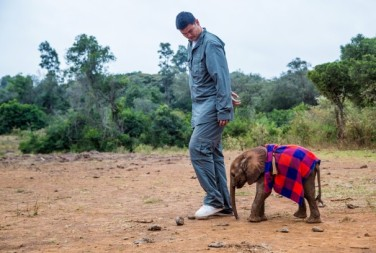 Yao Ming is followed by Kinango, a 2-week-old orphaned elephant whose mother was poached for her ivory, at Daphne Sheldrick's orphanage.