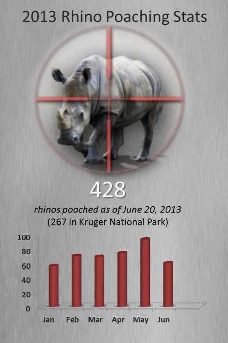 rhino jun 2013