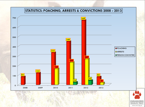 poaching arrests vs convictions