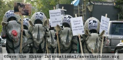 save the rhino world rhino day