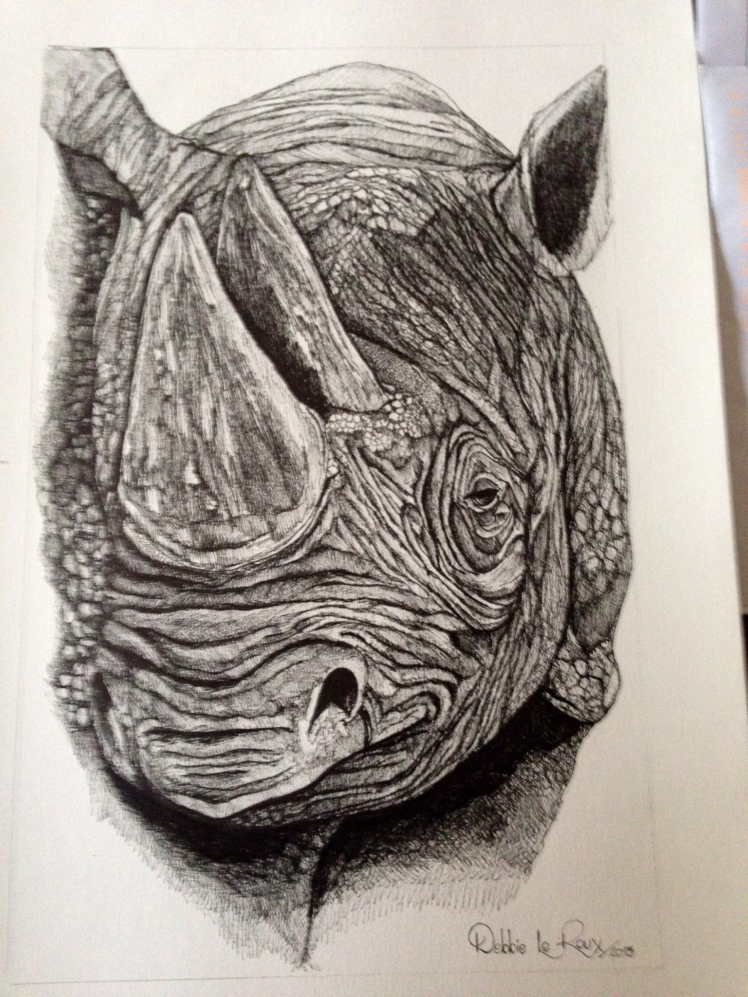 drawing | Fight for Rhinos