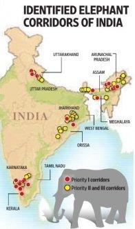 elephant corridors in india