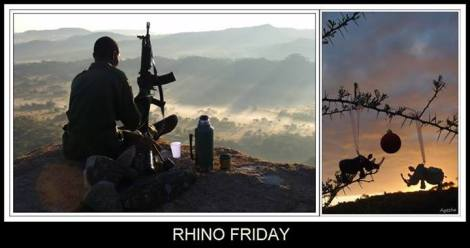 Rhino Friday holiday