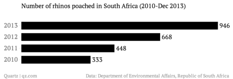 rhino poaching stats 2013