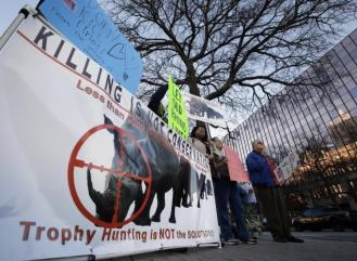 rhino auction protest