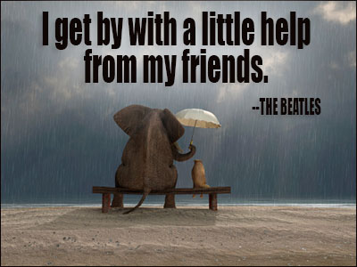 elephant friend quote