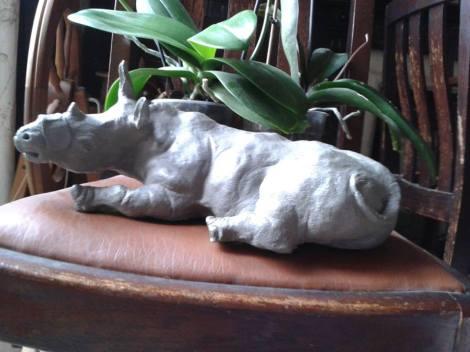 Rhinoplasty by john grainger