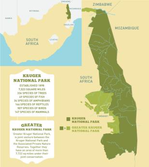 kruger map 1