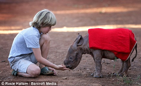 boy with maalim baby rhino