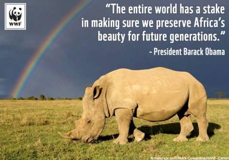 obama rhino