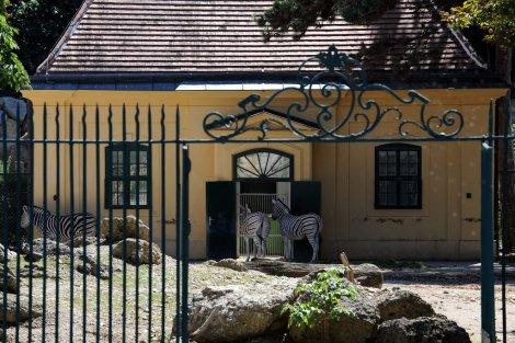 Tiergarten Schönbrunn in Vienna is the oldest running zoo, est in 1752