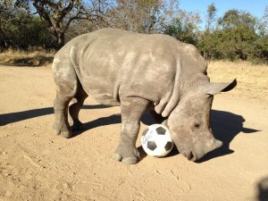 Gertje playing soccer 2