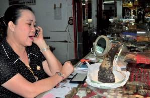 fake horn in jewelry shop in laos via karl ammann