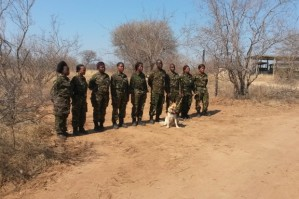 black mambas with dog