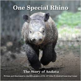 one special rhino