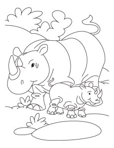 rhino and baby coloring page 2