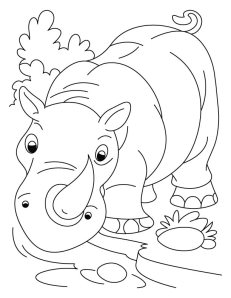Rhino coloring page 1
