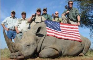 american flag rhino