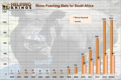 rhino poaching stats nov 2014