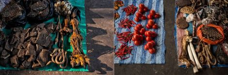 Left: Dried elephant skin, tiger penises and paws (which might be fake or from rare animals raised on farms), and pangolin scales are sold in a Mong La market. Right: Peppers and tomatoes are displayed next to animal parts.