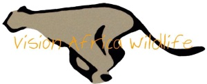 vision africa wildlife