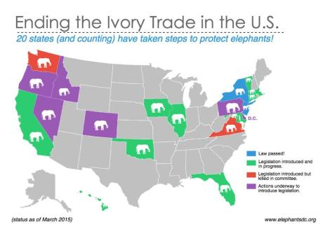 Ivory bans March 2015