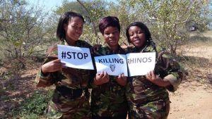 Stop killing rhinos black mambas