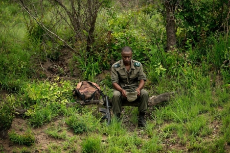 ranger near poaching