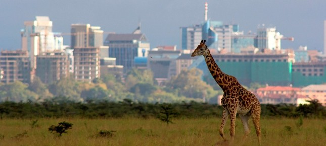 banner-nairobi-national-park by all time safaris