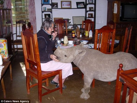 Jimmy Rhino at dining table by caters news agency